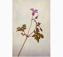 Herb Robert T-Shirt