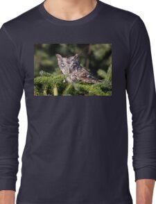 Inquisitive Screech Owl Long Sleeve T-Shirt