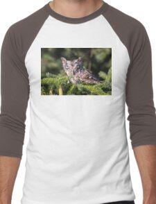 Inquisitive Screech Owl Men's Baseball ¾ T-Shirt