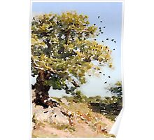 Charnwood Forest Watercolour Poster