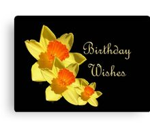 Daffodils Isolated On Black Birthday Wishes Canvas Print
