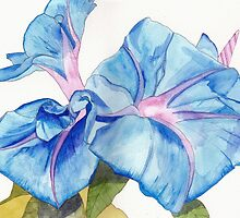 Blue Bindweed by Esmee van Breugel