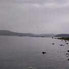 Grey day at the Bay by Dorthy Ottaway