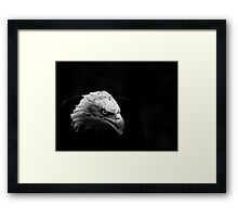 Eagle in Black and White Framed Print