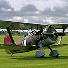 Polikarpov I-15bis &quot;Chaika&quot; 4439 white 19 by Colin Smedley