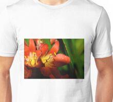 Shining the Light Unisex T-Shirt