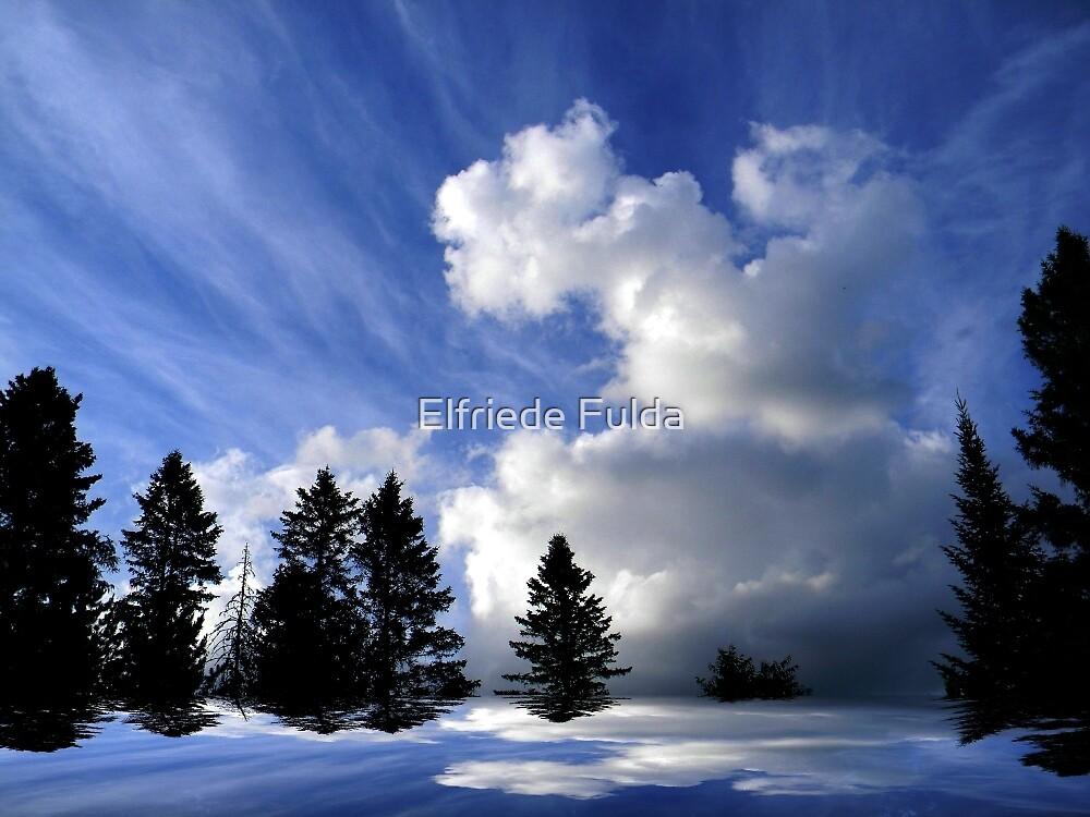The Cloud ! by Elfriede Fulda