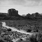 The Road in Tse&#x27;Bii&#x27;Ndzisgaii ~ Monument Valley by Lucinda Walter