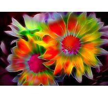 Fractal Flowers Photographic Print
