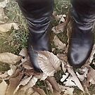 Dead leaves in Winter. by Becca7