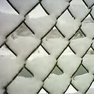Snow Fence by steveschwarz