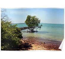 Sea view at Port Essington Poster