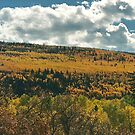 october in colo. by steveschwarz