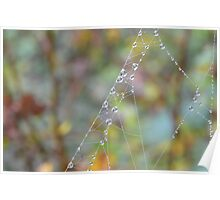 Silky Strands with Dew Poster