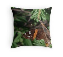 Red Admiral (card only) Throw Pillow