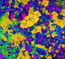 Abstract Flower Shot by Robert Semk
