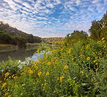 Texas Hill Country Wildflowers along the Pedernales 1 by RobGreebonPhoto