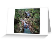 Wombeyan Falls Greeting Card