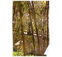 Kerosene lamp amidst bamboo plants Poster