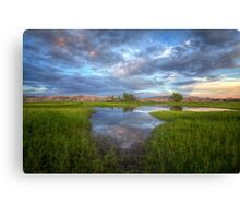 Calm Center Canvas Print