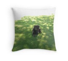 my lodger roy Throw Pillow