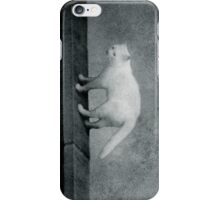 surreal 28 iPhone Case/Skin