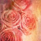 Romantic Roses  by Nicola  Pearson