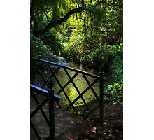 BRIDGE TO THE PARADISE GARDEN Photographic Print