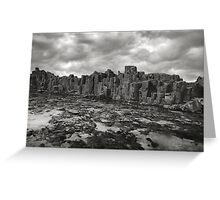 Boneyard Bold II Greeting Card