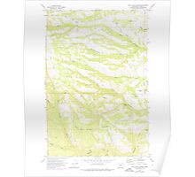 USGS Topo Map Washington State WA Willy Dick Canyon 244717 1957 24000 Poster