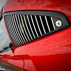 The 308 Ferrari  by David  Preston