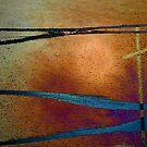 Crossroads by Lenore Senior