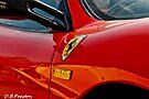 Ferrari - The personal touch  by David  Preston