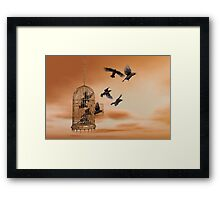Freedom - Spread Your Wings and Fly Away Framed Print