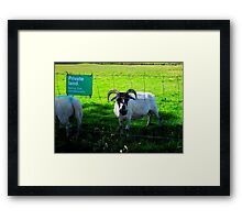 """Who Do You Think Your Kiddin"" Framed Print"