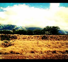 Mountains of Maui by RachelBobby
