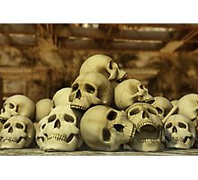 A Pile of Skulls Photographic Print