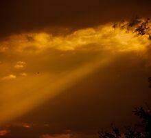Heaven Sent by Drew Caron