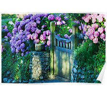 Hydrangeas At The Gate Poster