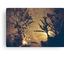 Redscale Landscape with multiple exposure Canvas Print