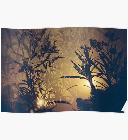 Redscale Landscape with multiple exposure Poster