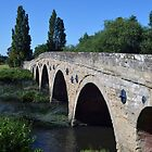 Bridge at Barford, Warwickshire by Chris Monks