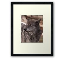 Just Blending In Framed Print