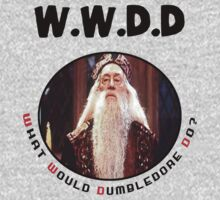 What Would Dumbledore Do? T-Shirt