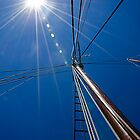 Sailing in the Sun by Anthony M. Davis