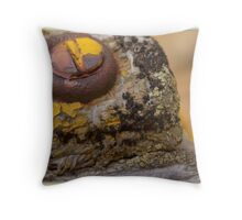 Something Old, Something New  Throw Pillow