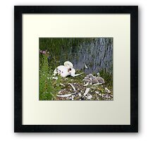 Quiet..............Mummy Is Sleeping Framed Print