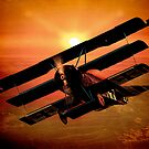 The Bloody Red Baron's Fokker at Sunset by Chris Lord