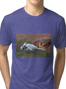 The Donna Nook Grey Seal Colony Tri-blend T-Shirt