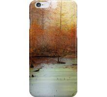 Heron Pond - Autumn iPhone Case/Skin